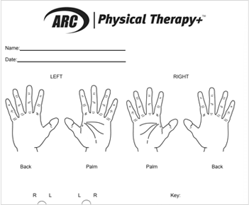 Hand chart form download