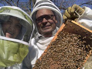 susan frank grispino bees